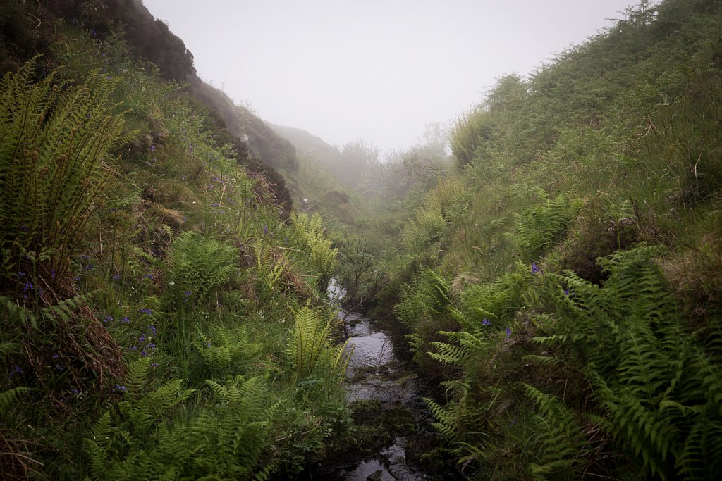Misty Burn, Kerrera